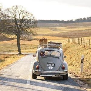 путешествие на машине куда