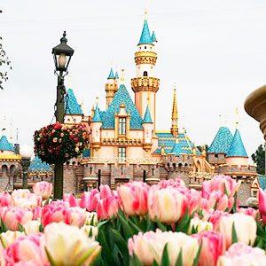Париж_Disneyland_весна