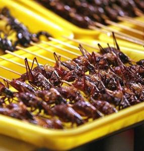 Еда из насекомых.