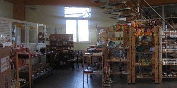 Музей-меда-и-пчеловодства