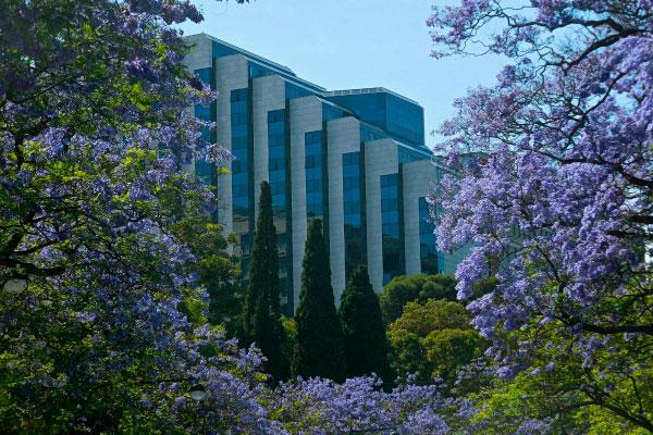 Столица Португалии в июне.