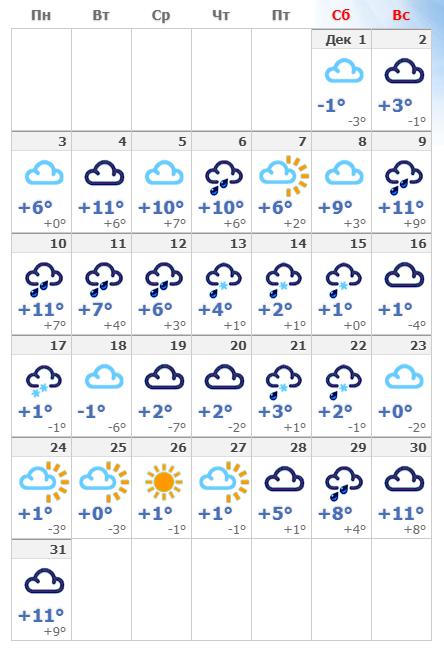 Погодные условия в декабрьском Амстердаме в 2019 году.