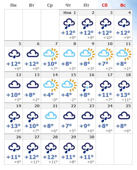 Погодные условия в ноябрьском Амстердаме в 2021 году.