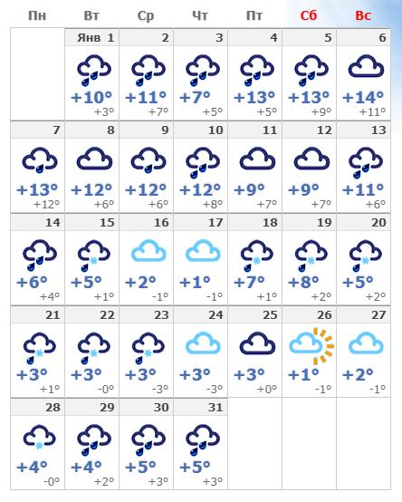 Погодные условия в январском Амстердаме в 2020 году.