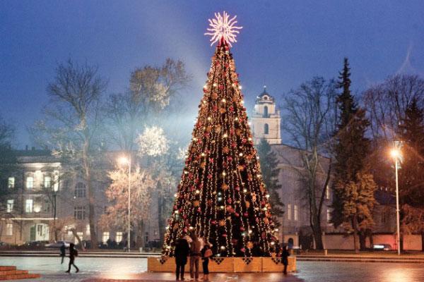 Приглашаем провести Новый год в Калининграде.