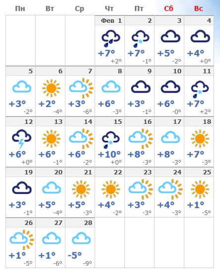 Погодные условия в феврале 2020 в Амстердаме.