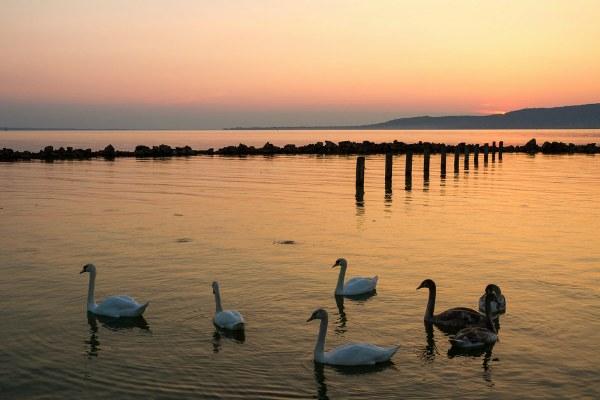Озеро на закате.