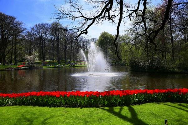 Парк тюльпанов.