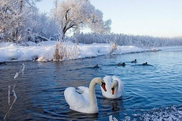 Озеро кабан.