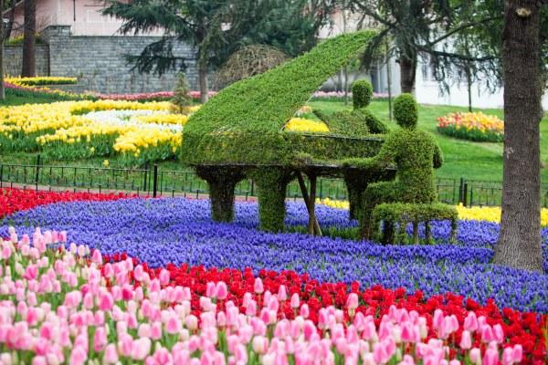 Праздник тюльпанов.