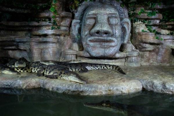 Крокодиляриум.