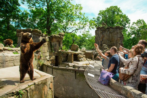 Зоопарк Калининграда.