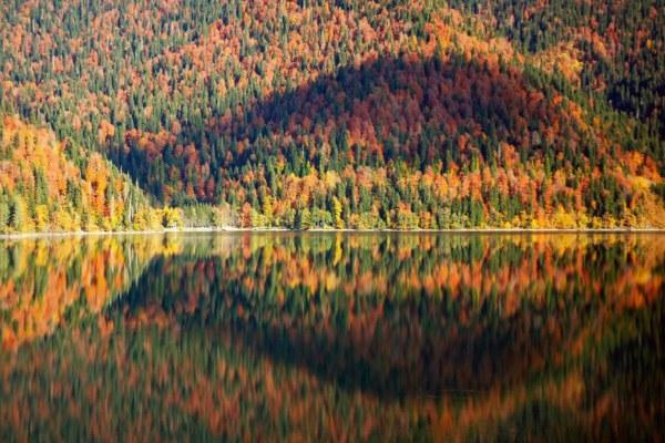 Абхазия осенью.