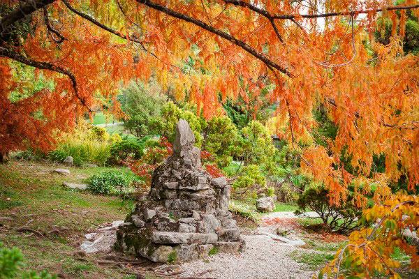 Осенний Дендрарий.