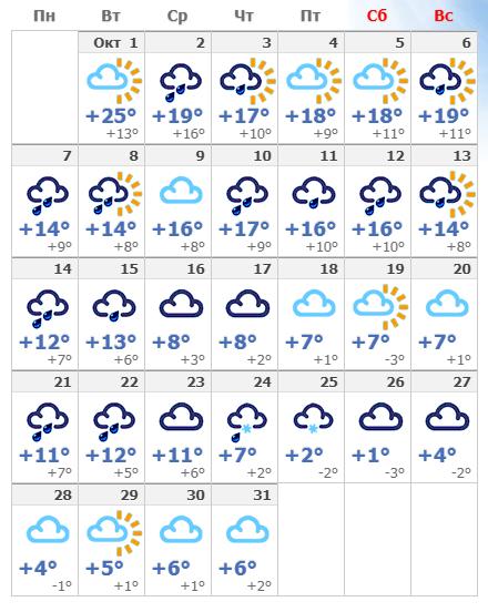 Погодные условия в октябрьской Вене в 2020 году.