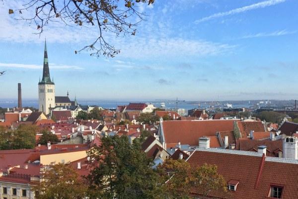 Осень 2020 в Таллине.
