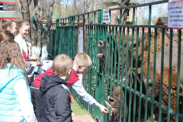 Зоопарк Лимпопо.