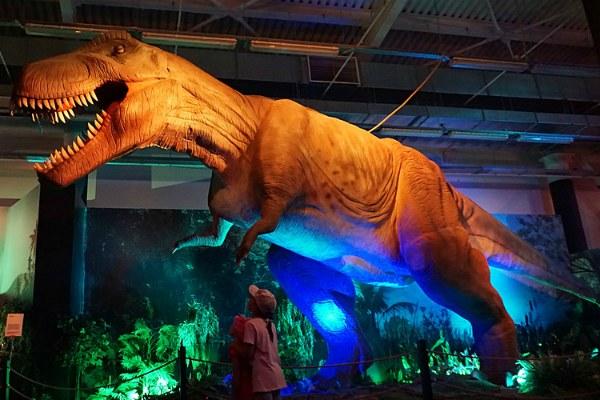 Выставка динозавров.