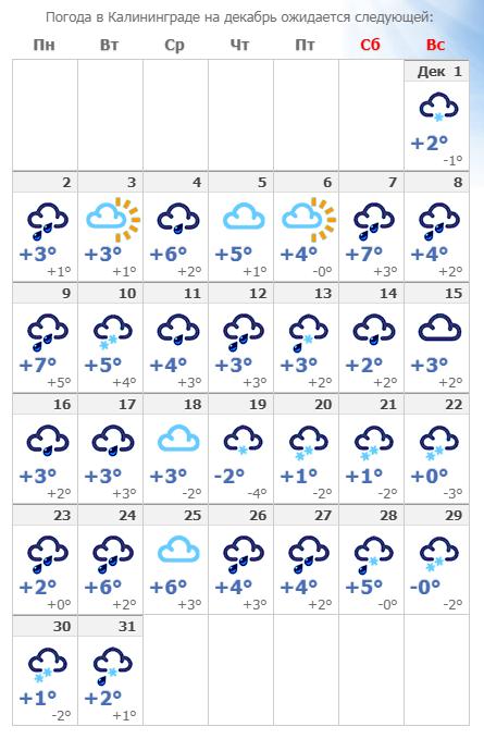 Погодные условия в Калининграде в декабре 2019 года.