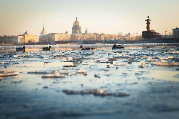 Весна 2021 в Петербурге.