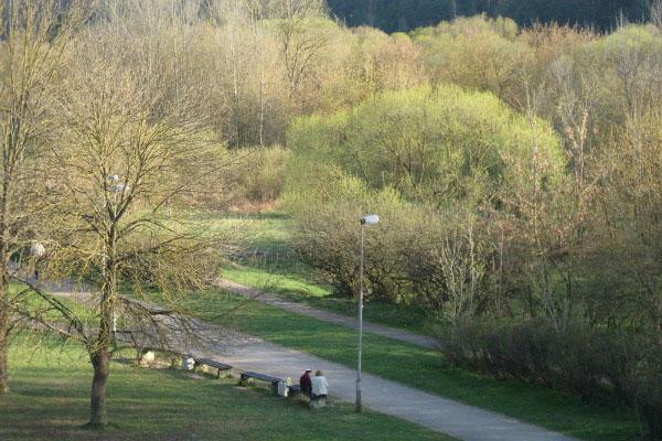 Парк Вингис в апреле.