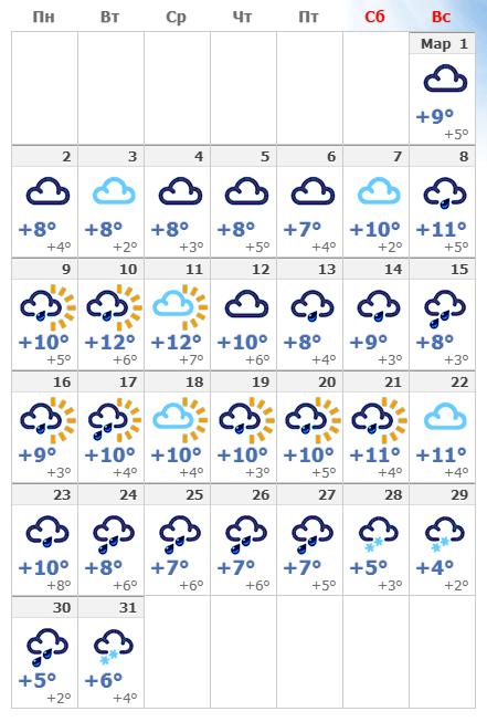 Погодные условия в марте 2020 года в Брюсселе.
