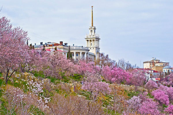Весна 2020 в Севастополе.