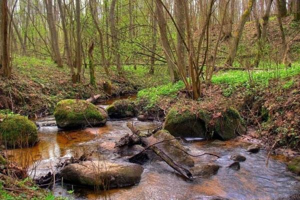 Себежский национальный парк.