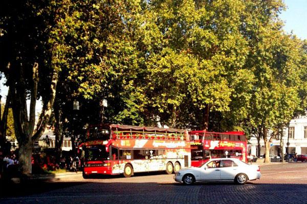 Экскурсионные автобусы.