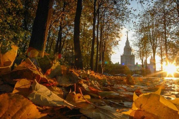 Куда ходить в Москве в октябре 2020 года и что посмотреть.