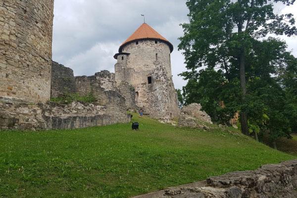 Венденский замок.