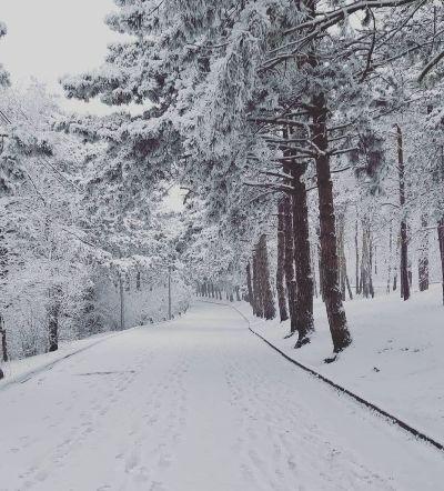 Дорога к горе Машук.