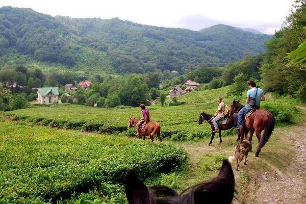 Прогулка на конях.