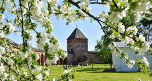 Весна в Новгороде.