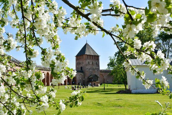 Весна 2021 в Новгороде.