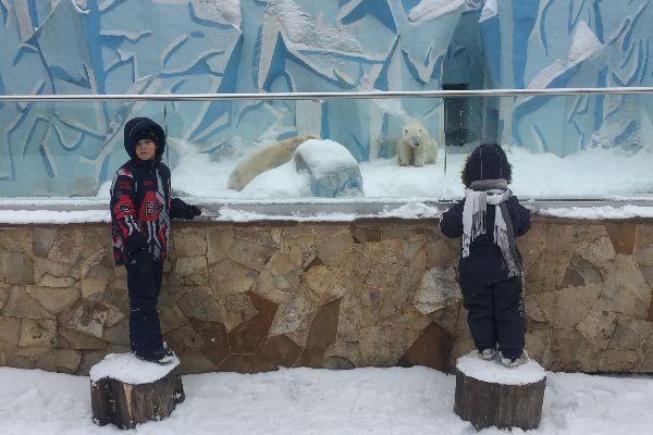 Экскурсия в зоопарк.