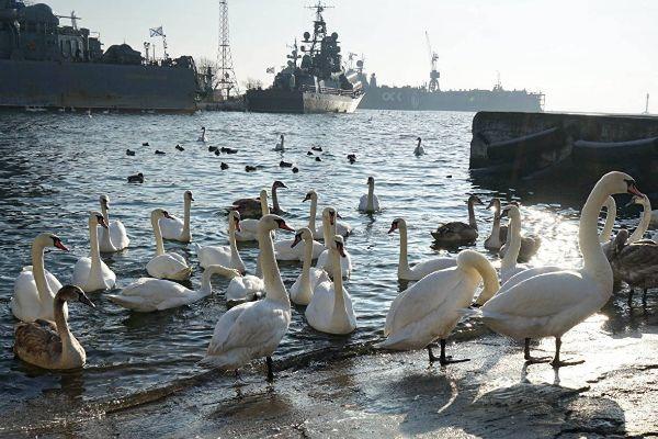 Балтийск.
