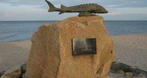 Памятник осетру.